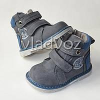 Демисезонные ботинки для мальчика Jong Golf серые 23р.
