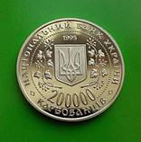 200000 КАРБОВАНЦЕВ 1995 УКРАИНА — БОГДАН ХМЕЛЬНИЦКИЙ, фото 2