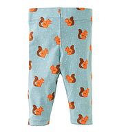 Леггинсы для девочки Squirrel Little Maven