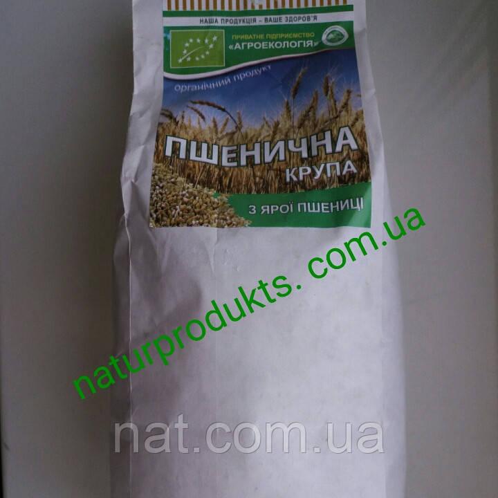 Крупа пшеничная (ярая) ОРГАНИЧЕСКАЯ, в/с, 500 г