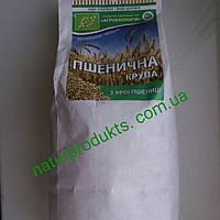 Крупа пшеничная (ярая) ОРГАНИЧЕСКАЯ, в/с, 500 г, фото 1