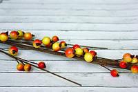 Ветка с желто-красными ягодками