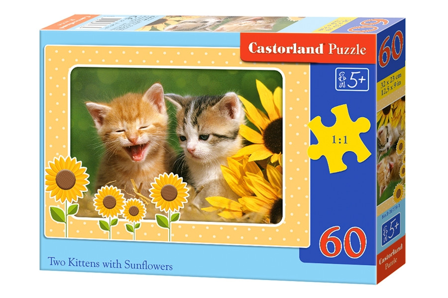 Пазлы Castorland Два котенка 60 элементов