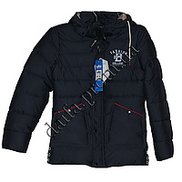 Зимняя куртка на синтепоне E20-1s оптом недорого.Интернет-магазин.Одесса.
