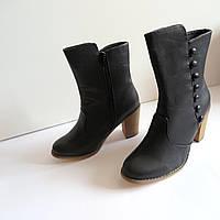 Женские туфли сапоги на каблуке 38 размер 245см Tomasso Taccardi  классика кожа