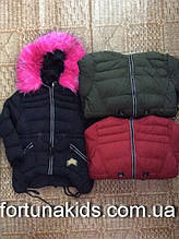 Куртки зимние на меху для девочек SEAGULL 4-12 лет