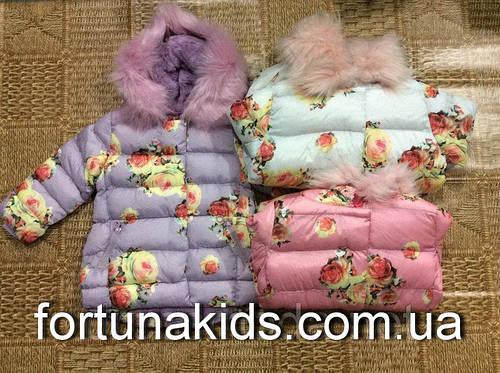Куртки зимние на меху для девочек GRACE 98-128 р.р.