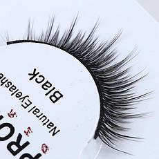SA Ресницы цельные Shilina Promax Natural Eyelashes Black 518 разные прямые d-8-11мм, фото 3
