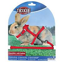 Шлейка с поводком для кроликов нейлон 25-44см/8мм Trixie 6150