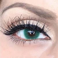 Недорогие цветные линзы для глаз. Бесплатная доставка.
