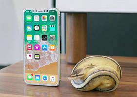Информация об Iphone 8, и его копии
