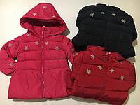 Курточка на флисовой подкладке для девочек Nature оптом ,12/18-30/36 мес., фото 1