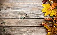 Фотофон виниловый, осенние листья