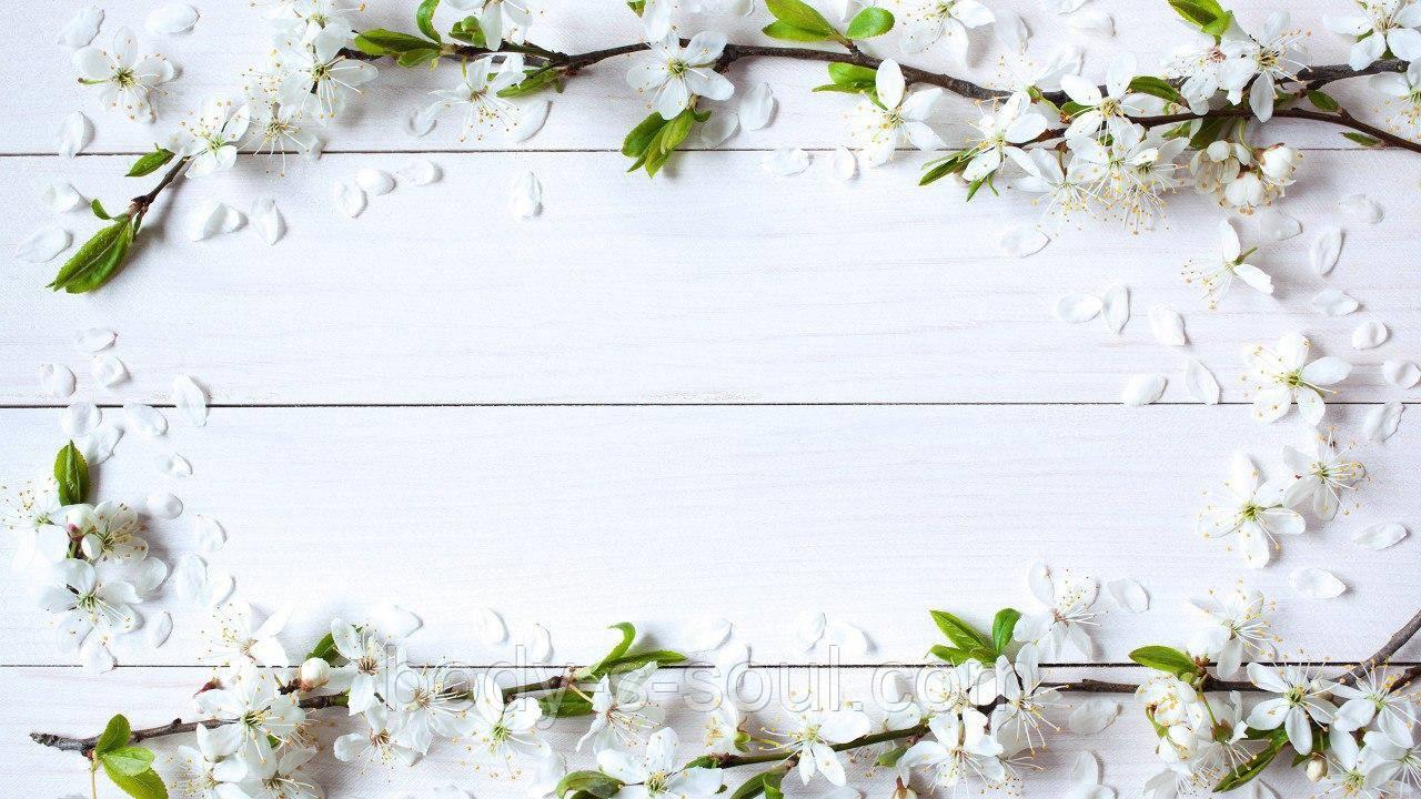Фотофон виниловый, белый с белыми цветами