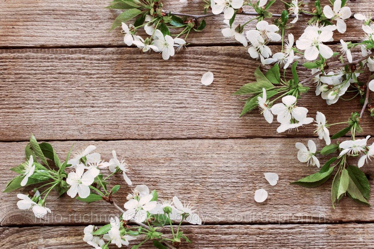 Фотофон виниловый, весенний цвет