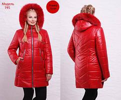 Зимние женские куртки батал (от 50 по 62 р)