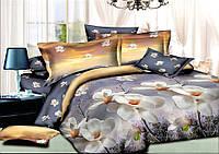 Комплект постельного белья полуторный, ранфорс 100% хлопок. Постільна білизна. (арт.7868)