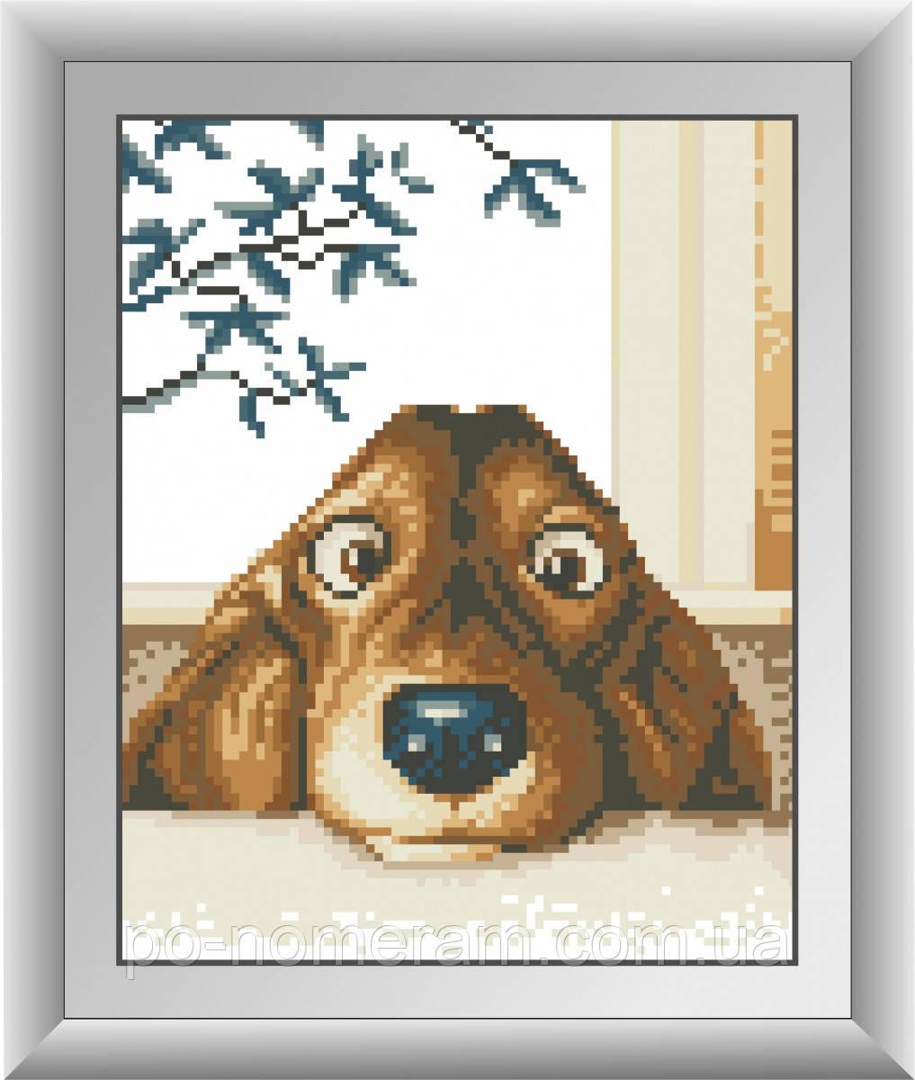 Алмазная живопись Dream Art Очаровательный щенок (квадратные камни, полная зашивка) (DA-30341) 20 х 25 см (Без подрамника)