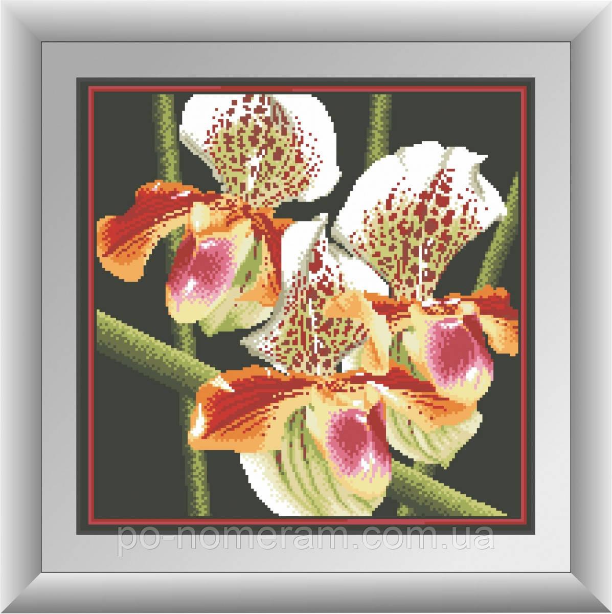 Картина из мозаики Dream Art Хищная орхидея (квадратные камни, полная зашивка) (DA-30411) 41 х 41 см (Без подрамника)