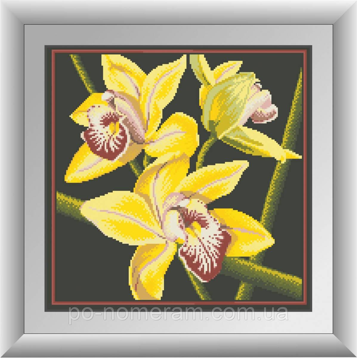 Алмазная вышивка Dream Art Желтая орхидея (квадратные камни, полная зашивка) (DA-30412) 41 х 41 см (Без подрамника)
