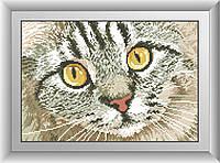 Картина из мозаики Dream Art Кошачий взгляд (квадратные камни, полная зашивка) (DA-30418) 26 х 38 см