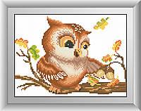 Картина из страз Dream Art Сова (квадратные камни, полная зашивка) (DA-30469) 20 х 27 см