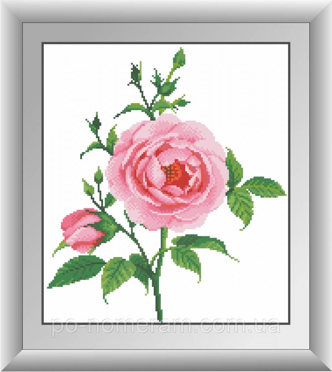Алмазная мозаика Dream Art Нежная роза (квадратные камни, полная зашивка) (DA-30476) 35 х 40 см (Без подрамника)