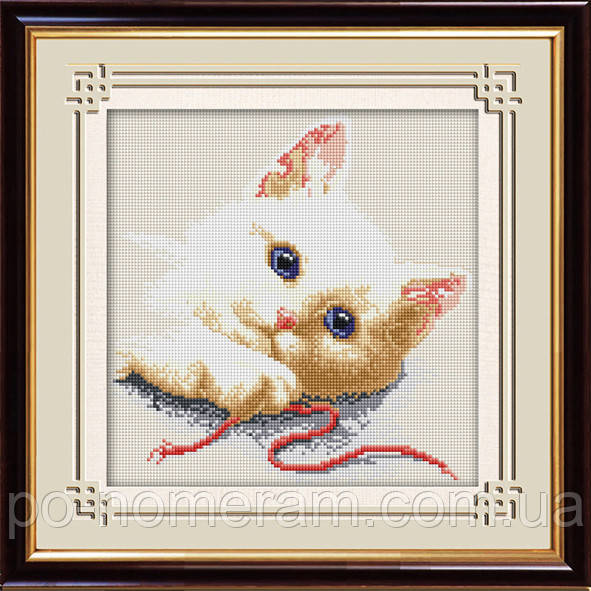 Картина из мозаики Dream Art Игривый котенок (квадратные камни, полная зашивка) (DA-30504) 25 х 25 см (Без подрамника)