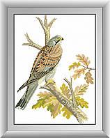 Картина алмазная вышивка Dream Art Сокол (квадратные камни, полная зашивка) (DA-30503) 31 х 42 см