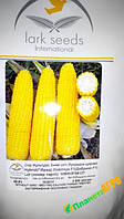 Семена кукурузы Добрыня F1, 2500 семян, Lark Seeds  (Ларк сидс), США