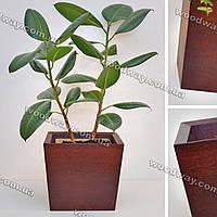 """Деревянный вазон для домашних растений """"TRAPEZE"""", форма трапеция, новая коллекция """"Stylish INTERIOR"""""""
