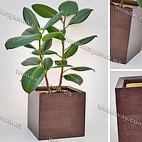 """Модный деревянный вазон для растений """"CUBE"""" в форме куба, новая коллекция """"Stylish INTERIOR"""""""
