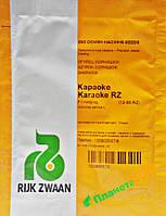 Семена огурца Караоке F1 250 семян, Rijk Zwaan