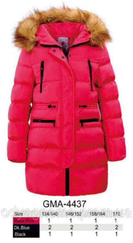 Курточка для девочек Glo-Story оптом, 134/140-170 рр.