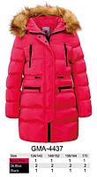 Курточка для девочек Glo-Story оптом, 134/140-170 рр., фото 1