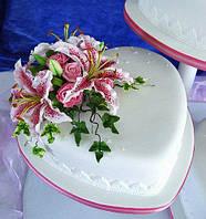 """Мастика (1кг) для торта универсальная """"Коричневая"""""""