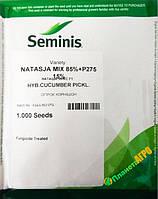 Семена огурца Наташа F1, 1000 семян, Seminis (Семинис), Голландия
