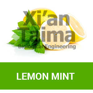 "Xi'an Taima ""Lemon Mint"""