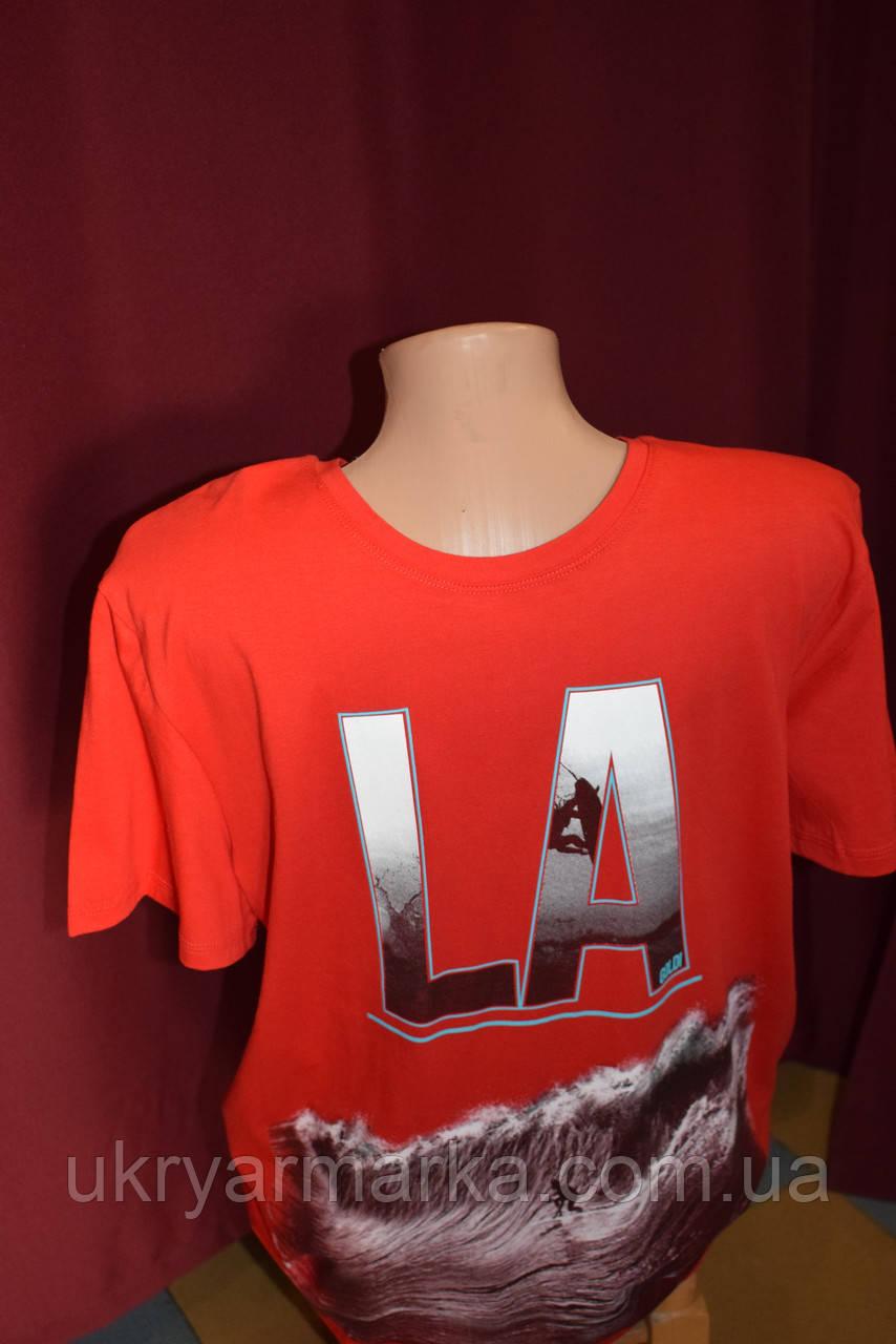 Чоловіча футболка 9622