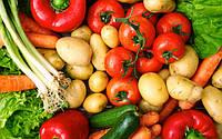 Неутешительные прогнозы овощного рынка