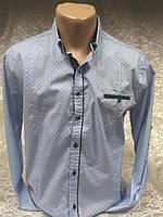 Рубашка мужская притал. GPORT св-голубая в мелкий рис.(M,L,XL,2XL,3XL)
