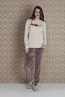 Женская велюровая пижама Hays 17007. Коллекция домашней одежды HAYS Зима 2018