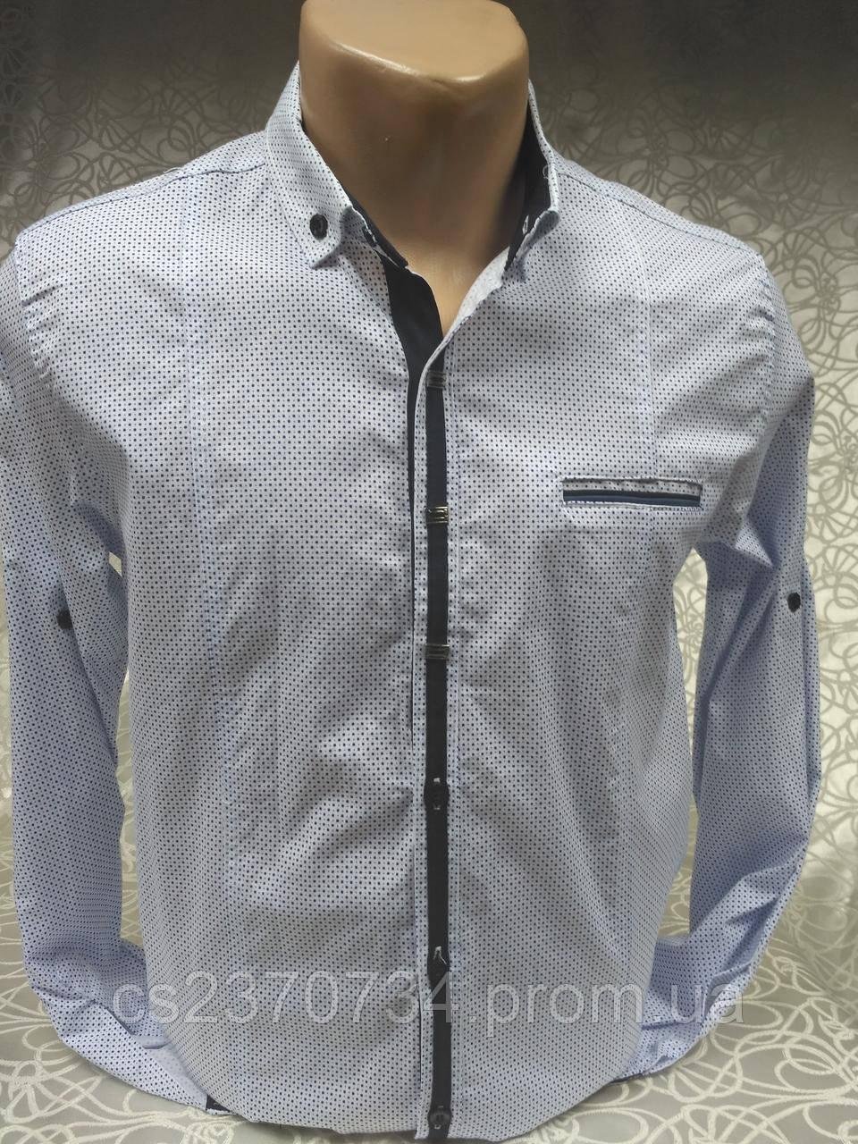 Рубашка мужская притал.GPORT белая в мелкий синий рис.(M,,XL)