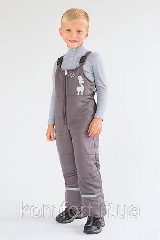 Полукомбинезон зимний для мальчика (графит), фото 2