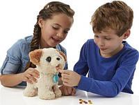Інтерактивна іграшка щеня Пакс FurReal Friends Pax My Poopin Pup