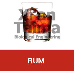 "Xi'an Taima""Rum"""