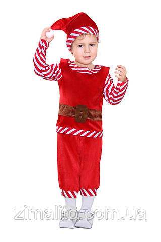 Гном карнавальный костюм детский