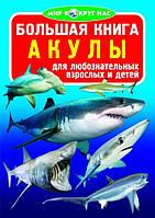 Большая книга.Мир вокруг нас.Акулы