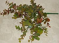 Букет осенней зелени эвкалипт зелено-коричневый