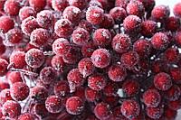 Сахарные ягодки 400 шт/уп.оптом темно-красного цвета (калина в сахаре)